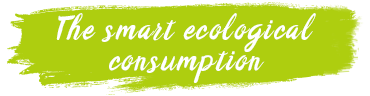 The smart ecological consumption